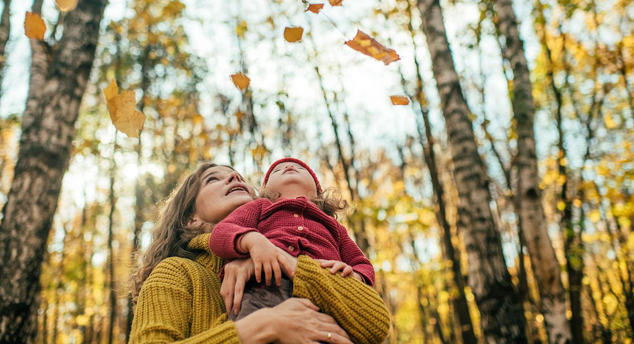 L'automne – saison vata