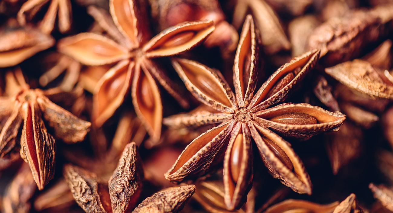 L'anis étoilé – un parfum de Noël flotte dans l'air