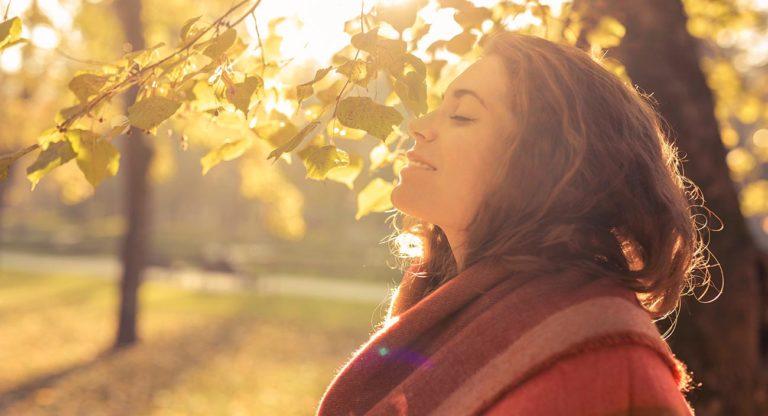 Gesund-und-Fit-mit-Ayurveda–Produkte-fuer-ein-starkes-Immunsystem