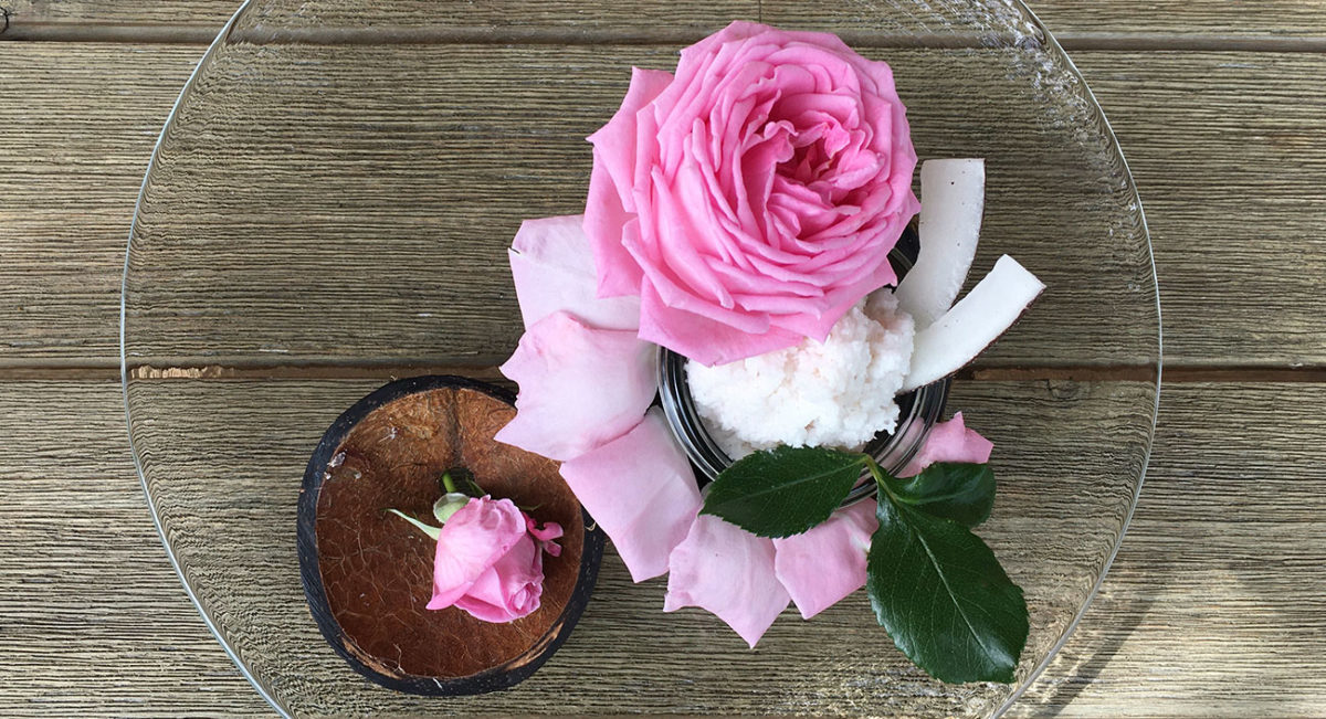 Frisches Kokosnuss-Rosen Dessert (vegan)