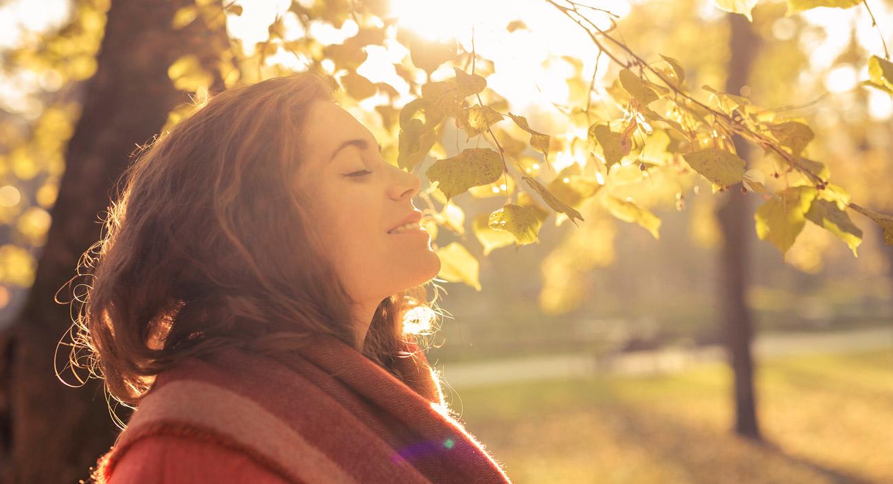 Stärkung des Immunsystems – besonders im Herbst